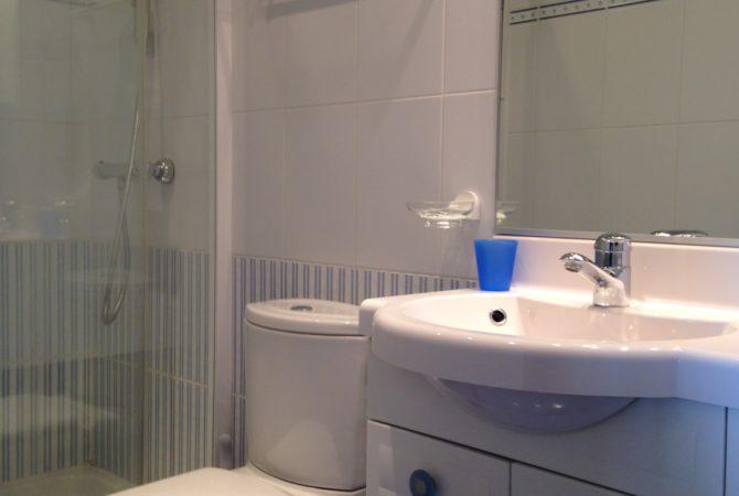 Salle d'eau vue sur la douche et wc