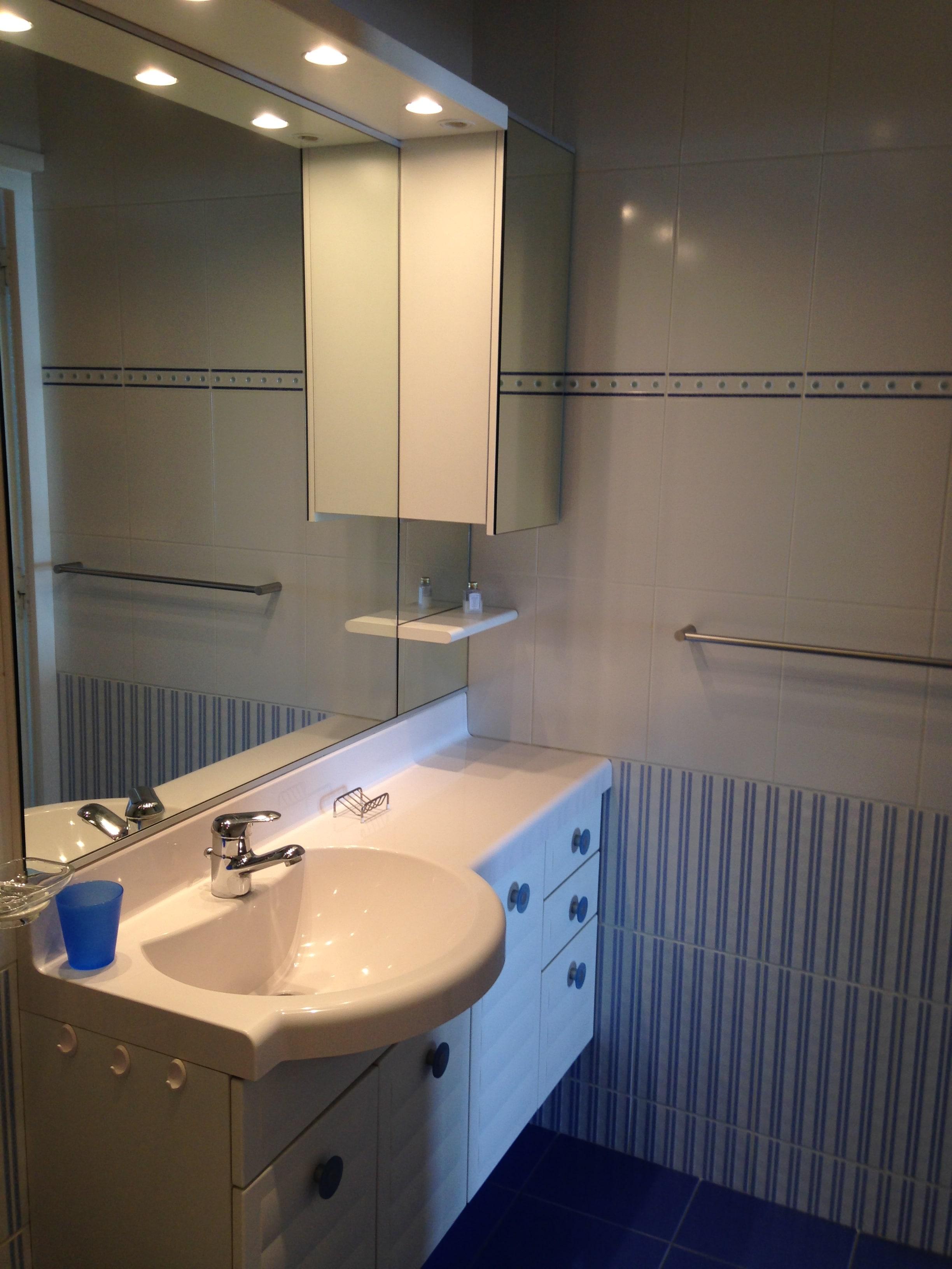 salles de bains et salle d 39 eau location appartement la. Black Bedroom Furniture Sets. Home Design Ideas